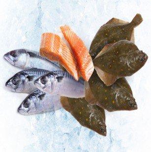 Vis bestellen via My Seafood